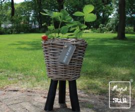 Bloemenmand op poten klein (27x42cm)