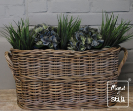 Set Hortensia Lichtblauw/Grass