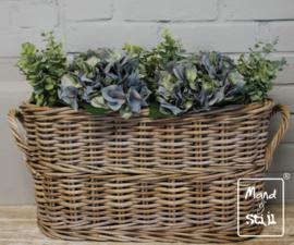 Set Hortensia Lichtblauw/Eucalyptus