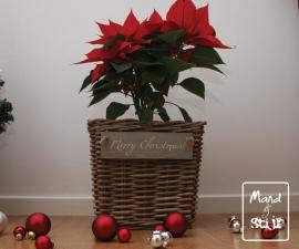 Rotan plantenbak feestdagen (27x27x25cm)