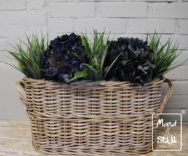 Set Hortensia Diepblauw/Grass