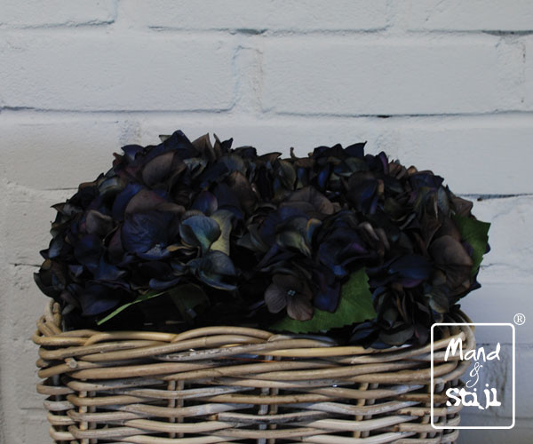 Set Hortensia Diepblauw klein