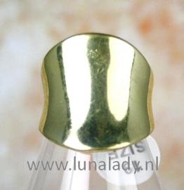 Ring goud 094