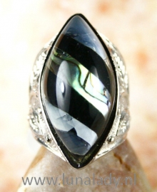 ring 173