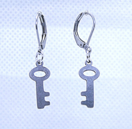 156 RVS oorbel sleutel
