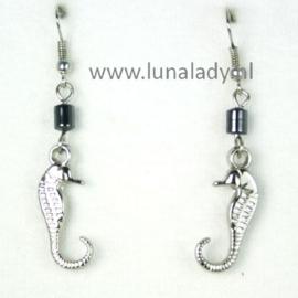 070 zeepaardje