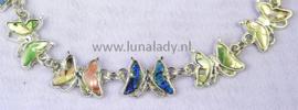 Enkelbandje vlinder abalone shell