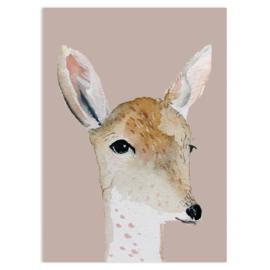 ansichtkaart Deer - Nuukk