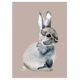 ansichtkaart Bunny  Rabbit - Nuukk
