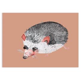 ansichtkaart Hedgehog - Nuukk