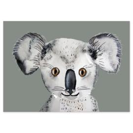 ansichtkaart Koala - Nuukk