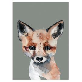 ansichtkaart Fox - Nuukk
