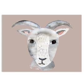 ansichtkaart Goat - Nuukk