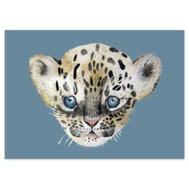 ansichtkaart Leopard - Nuukk