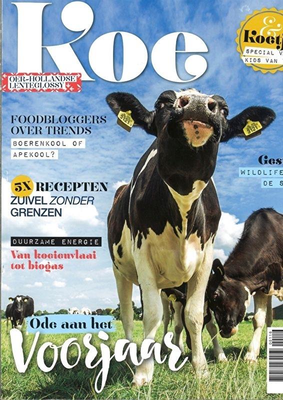Koe Magazine 3 2016