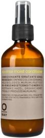 No-rinse moist conditioner