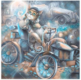 Diamond Painting Full 25x25 cm