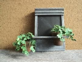 Schoolbord met plantjes
