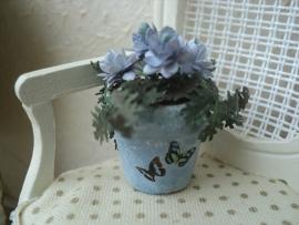 Bloeiend plantje in blauwe pot