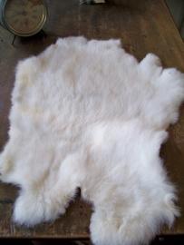 Wit konijnenvachtje 2