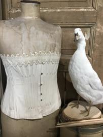 Buste met corset