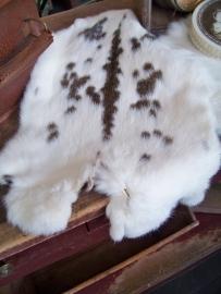 Gevlekt konijnenvachtje