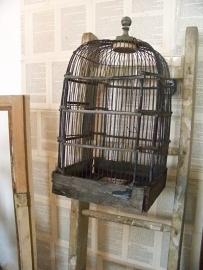 Zwarte vogelkooi