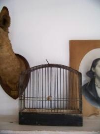 Aparte vogelkooi