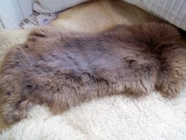 Grijs konijnenvachtje