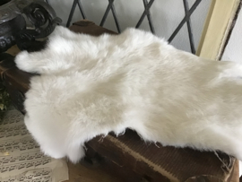 Wit konijnenvel