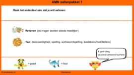 Oefenpakket 1 AMN Eindtoets (online opgaven)