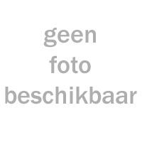 BTC CEO 200 - Windscherm Hoog (helder) - 2_4095