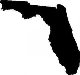 Florida State Motief 2 sticker