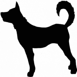 Hond motief 3 sticker