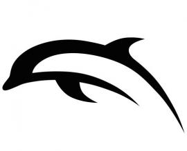 Dolfijn Motief 4 sticker