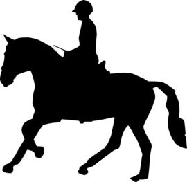 Paardrijden Sticker Motief 1
