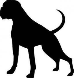 Boxer Motief 4 sticker