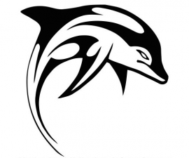 Dolfijn Motief 3 sticker