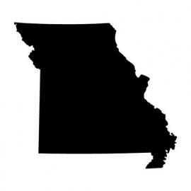 Missouri State Motief 1 sticker
