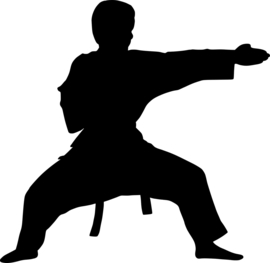Karate Sticker