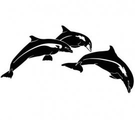 Dolfijn Motief 5 sticker
