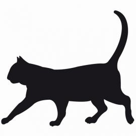 Kat Motief 2 sticker