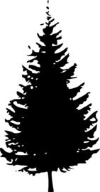 Kerstboom Motief 2