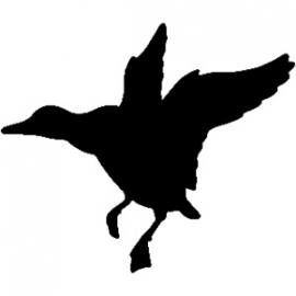 Eend Motief 3 sticker