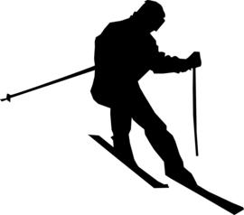 Skiën Sticker Motief 3