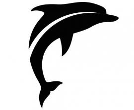 Dolfijn Motief 2 sticker