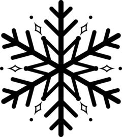 Sneeuwvlok Sticker Motief 5