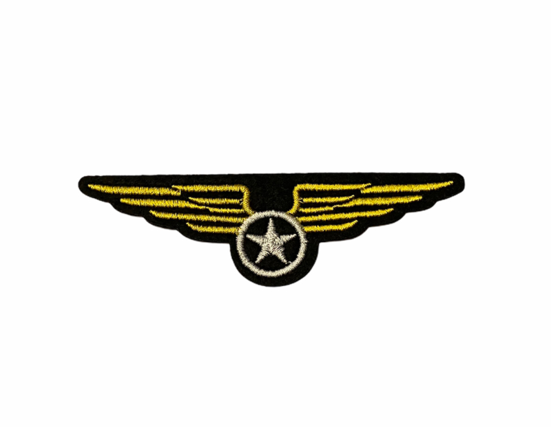 Army Wings Patch
