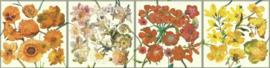 behangrand floral bloemen xx612