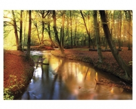 Mantiburi Fotobehang Fairytale Autumn 59